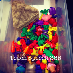 speech teach 365 box